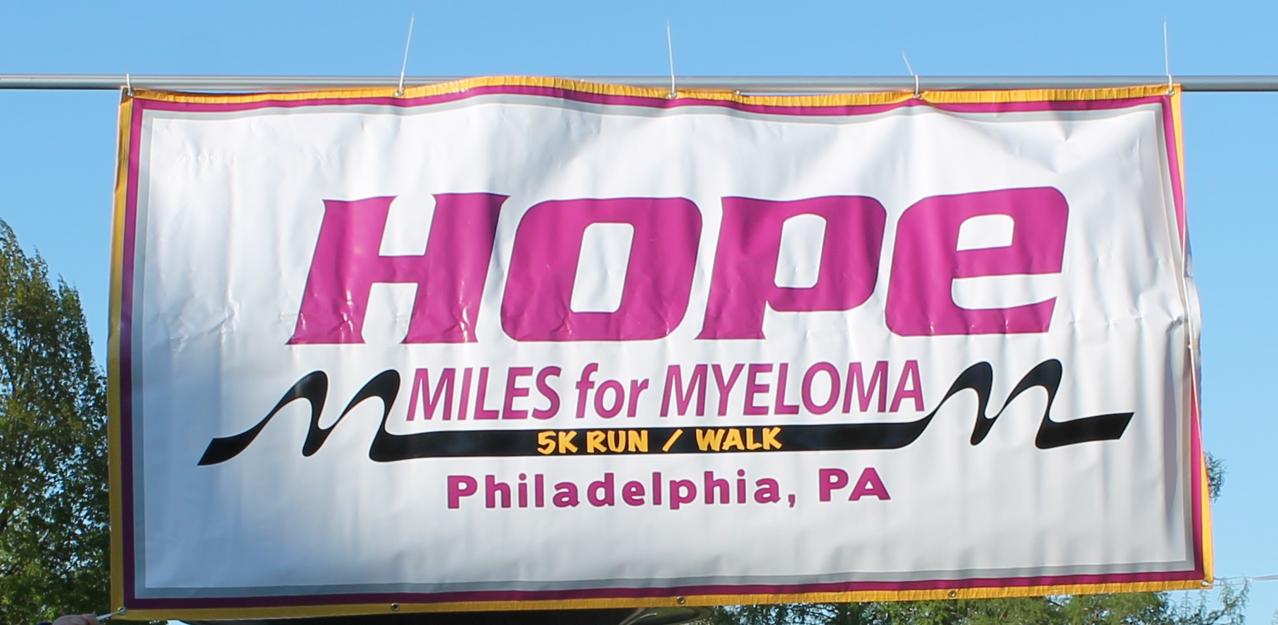 Hope Miles for Myeloma banner