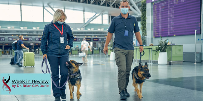 covid screening dogs at the airport